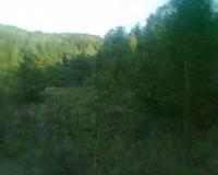 thumb_380731922_5_644x461_prodayu-zemelnu-dlyanku-2-ga-v-kosvskomu-r-n-vano-frankvsko-obl-ivano-frankovskaya-oblast